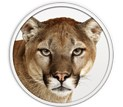 mountainlionicon