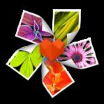 app.175x175-75