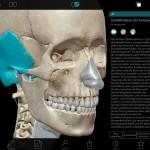 anatomie-atlas-ipad