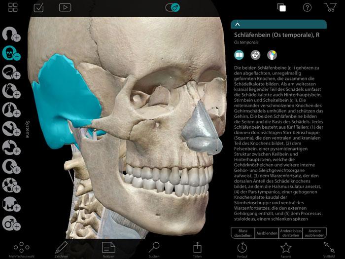 Spielerisch lernen: Anatomie-Atlas für iOS › ifun.de