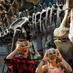 Google Naturkundemuseum