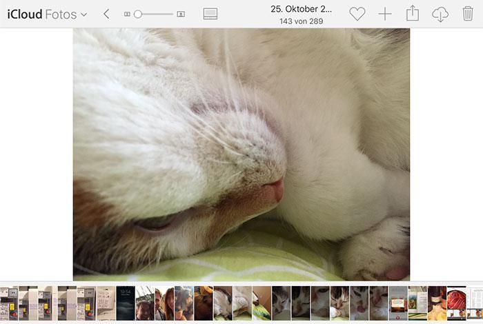 Icloud Fotos Scrollbalken