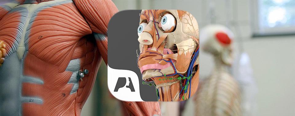 "Anatomie-App ""Pocket Anatomy"" aktuell kostenlos › ifun.de"
