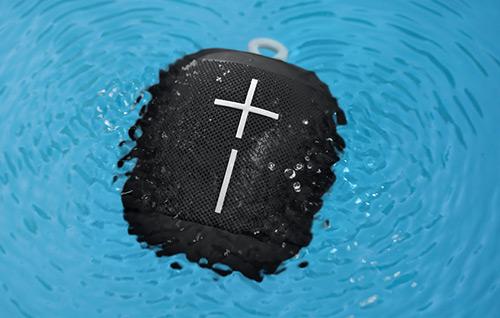 Ue Wonderboom Im Wasser