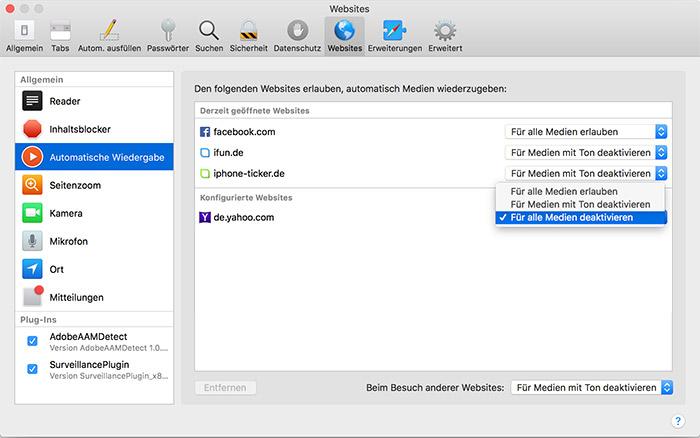 Safari Enstellungen Automatische Wiedergabe