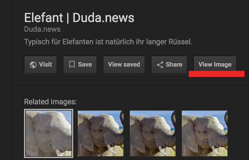 Elefant Suche