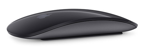 Magic Mouse Space Grau