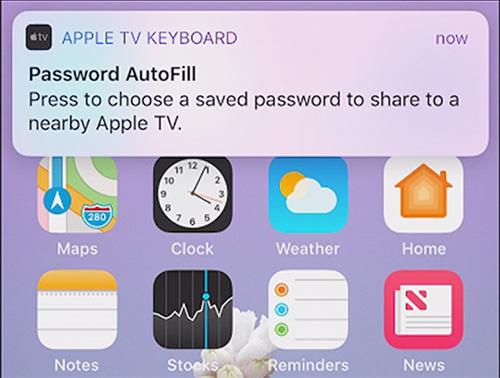 Apple Tv Passwot Anforderung