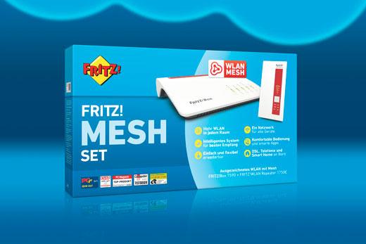 Fritz Mesh