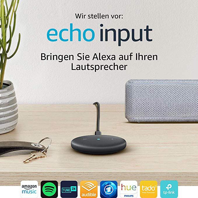 Echo Input Wuerfel