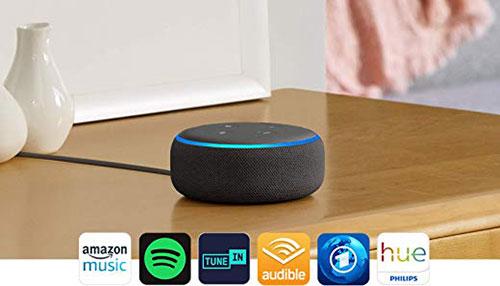 Echo Dot 500