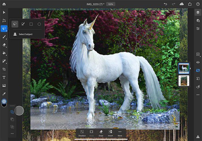 Adobe Photoshop Ipad Auswahl Werkzeug