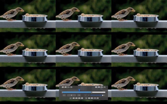 VScenePlayer Screen 1