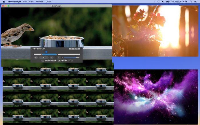VScenePlayer Screen 2
